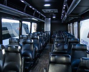 Mini-coach-leather-seats